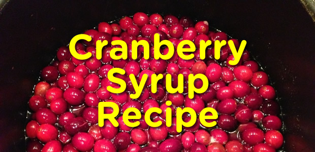 Extremely Useful Cranberry Syrup Recipe