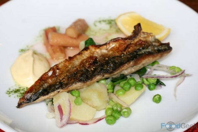 Mackerel, Potato & Spring Green Salad, Roasted Rhubarb