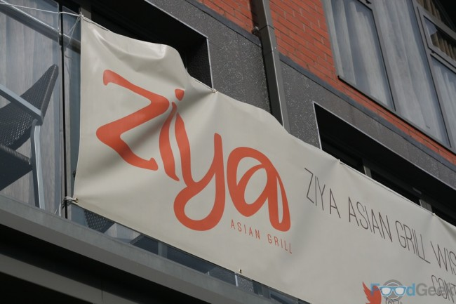 Ziya Banner